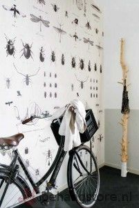 BE Onszelf Enjoy poster insecten spin wit zwart grijs - Onszelf Enjoy behang+posters - Behangexpresse / Onszelf - Behang KIDS en Baby - Behangstore
