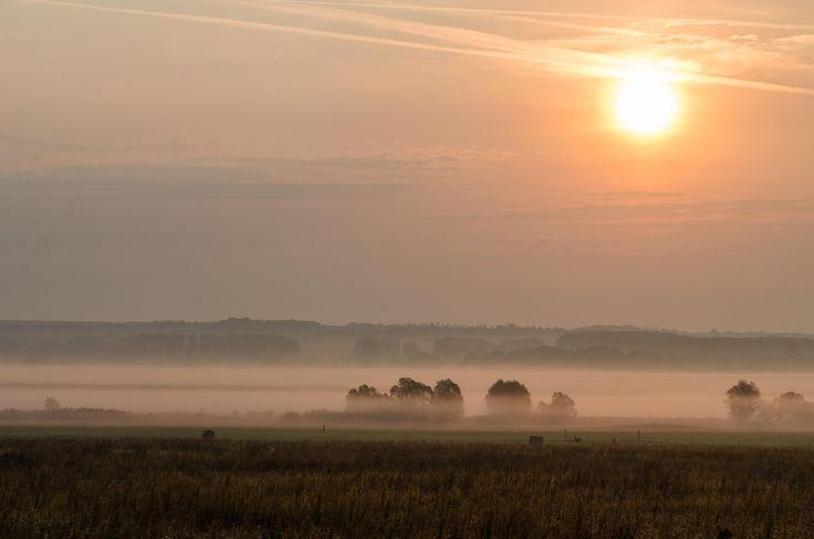 Róth Hajnalka Hajnali köd Őszi reggel varázsa a Vértes lábánál elterülő réten. Több kép Hajnalkától:  https://www.facebook.com/nalkaroth/
