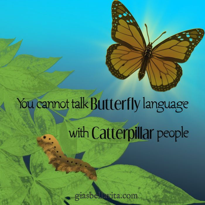 You cannot talk Butterfly language with caterpillar people.    Quotes for life. Encouragement, positive, depression, self esteem, love, beautiful, strength, happy, for women, change, relationships, feelings, family, thoughts, meaningful.