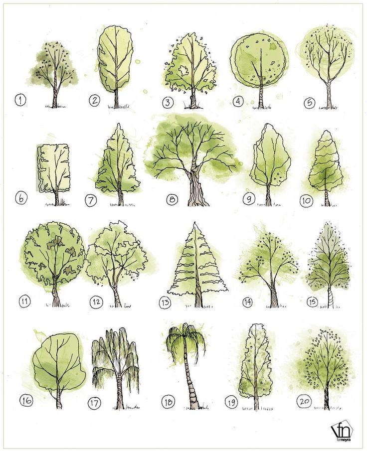 деревья в картинках их сборка нас продаже представлены