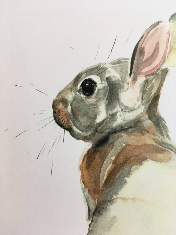 Bebe Lapin Aquarelle Impression Etsy Bunny Watercolor Bunny