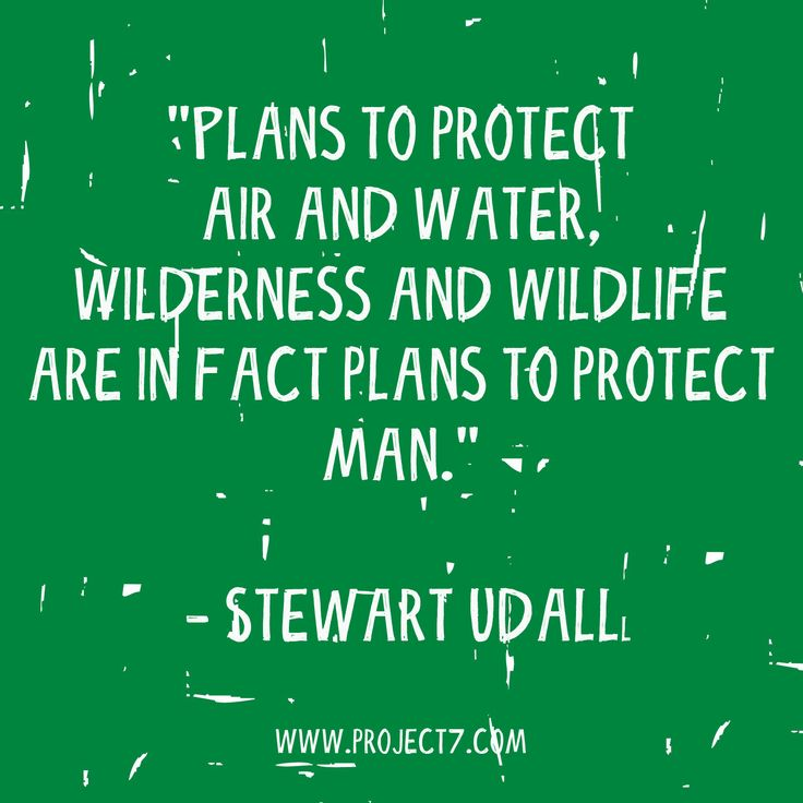 Famous Wildlife Conservation Quotes: 31 Best Nature Quotes Images On Pinterest