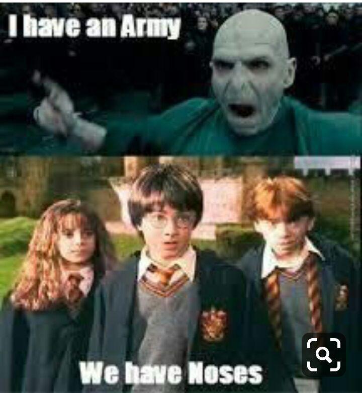 Le But Est Le Meme Que Le Precedent Aleatoire Aleatoire Amreading Books Wattp Harry Potter Voldemort Harry Potter Memes Hilarious Harry Potter Jokes