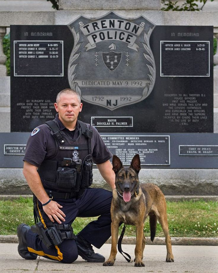 This is a pic of K-9 Officer Michael Lucchesi and K-9 Matou from the Trenton NJ Police Department. Officer Lucchesi is also the Vice President of the Capital K-9 Association. A non-profit who's mission is to provide bulletproof vests for working K-9's. Www.capitalk9association.org or you can like Capital K-9 Association on Facebook.