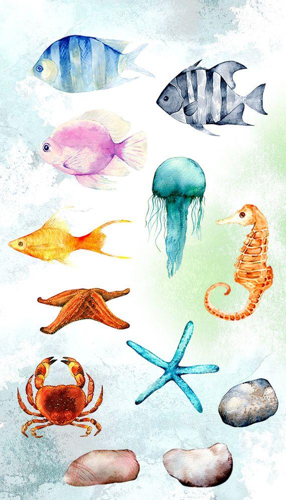 Watercolor Sea Life Clipart Ocean Clip Art Png Etsy Watercolor Sea Watercolor Fish Sea Life Clipart