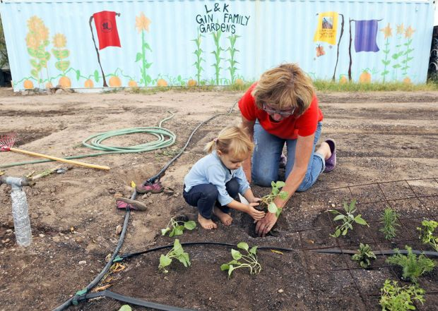 Great All About The Joys Of Fall And Winter Vegetable Gardening In Tucson, With  Advice From