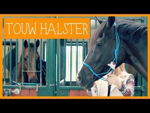 Touwhalster knopen en pimpen   PaardenpraatTV - YouTube