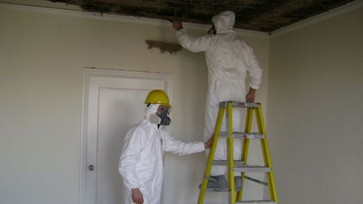 Mold Removal and Remediation | Services | Dryfast Mold Remediation