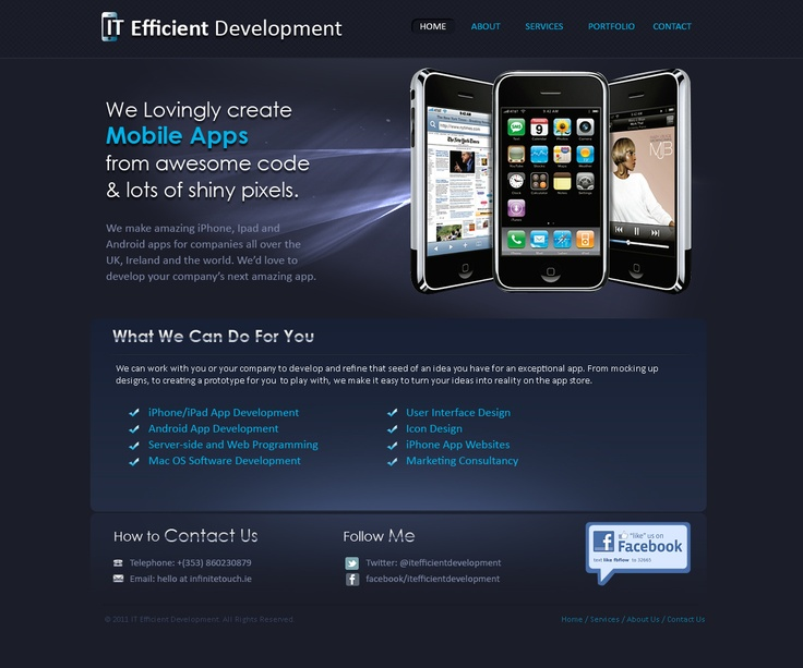 IT consultant website design and development