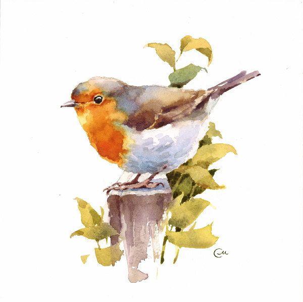 Original Watercolor Painting Robin Bird Illustration 7 4/5 x 7