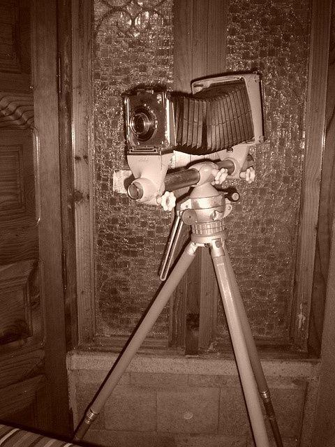 Pimp (DVD)  #camera  #Nikon  #Canon  #Nikon #Coolpix  #camera #photo camera