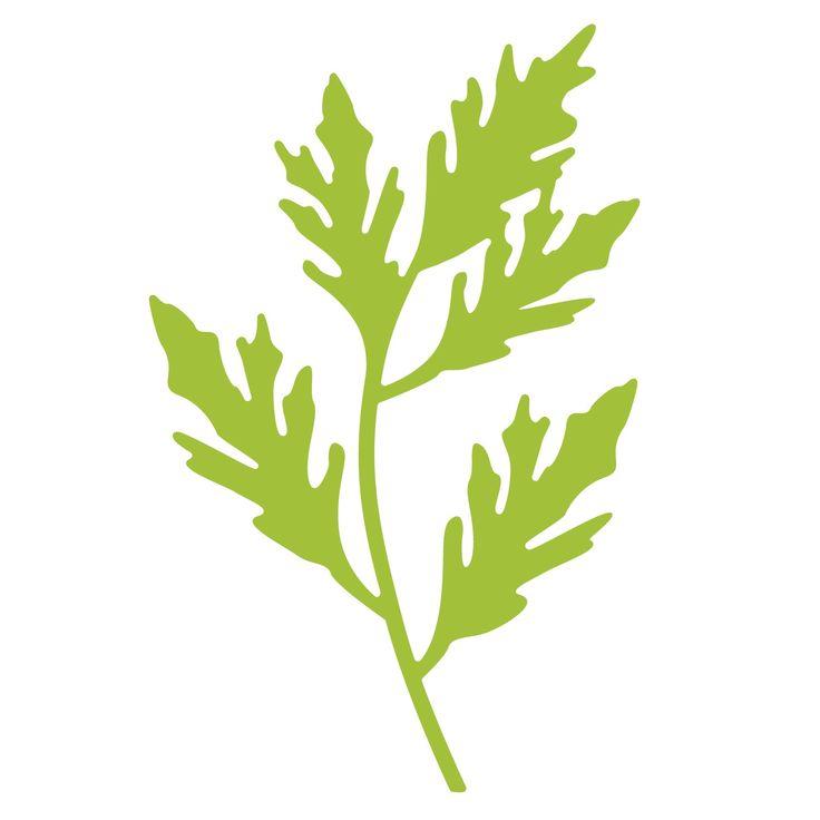 Top Dog Dies Leafy Branch Die