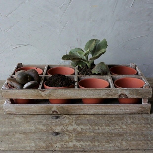 Wood Crate With 8 Terra Cotta Pots