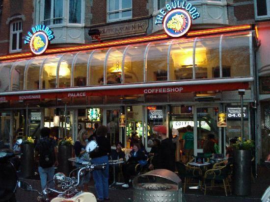 Leiden Square (Leidseplein) (Amsterdam, The Netherlands): Address, Tickets & Tours, Point of Interest & Landmark Reviews - TripAdvisor