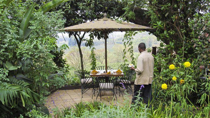 Gibbs Farm, Karatu region, Tanzania Highlands. #Africa #Travel #Tanzania #weknowbecausewego