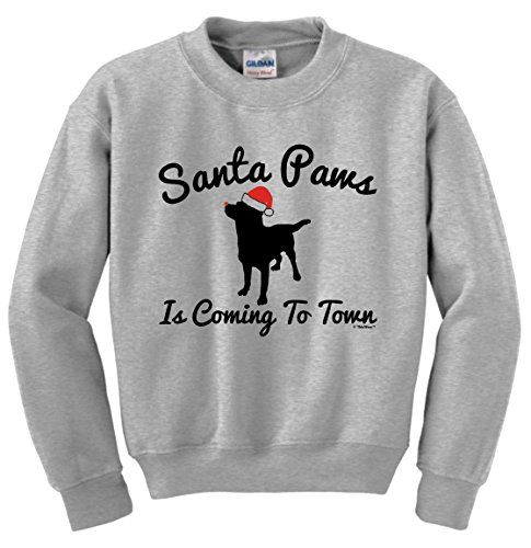 Christmas Gifts Christmas Labrador Santa Paws is Coming to Town Youth Crewneck Sweatshirt Small Ash *** Review more details @