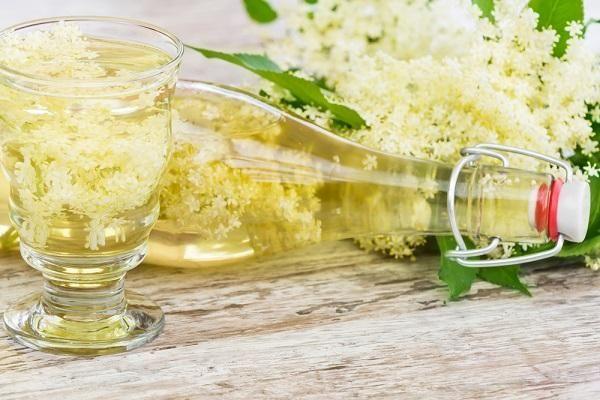 Zdroj: Bezové květy mají léčivé účinky z: Shutterstock