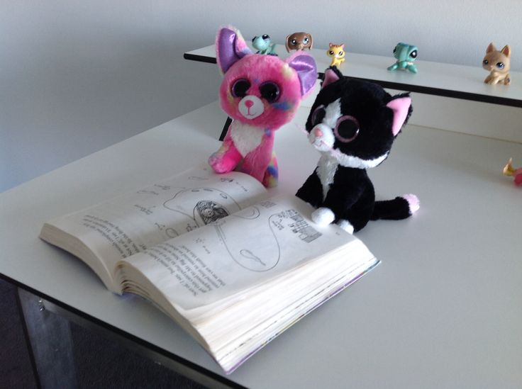 Silky paw and tippy joe decided to read the second page of 52 - story treehouse.