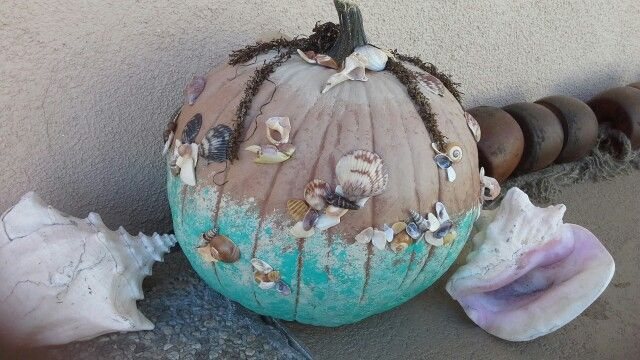 Best images about beach pumpkins on