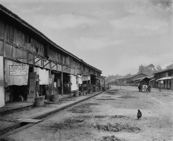 1883-1888 Street with wooden shops in Medan and buffaloes, pulling a car. — di Kota Medan.