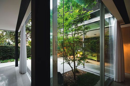 Modern Residential House Design in Australia, by Chenchow Little Architects - Szirtes has a tree within