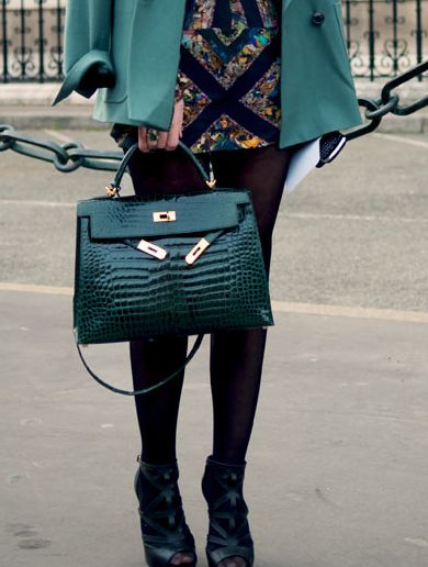 Hermes on Pinterest | Crocodiles, Hermes Kelly and Miroslava Duma