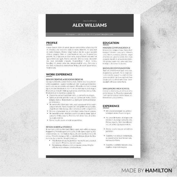 The 25+ Best Executive Resume Template Ideas On Pinterest