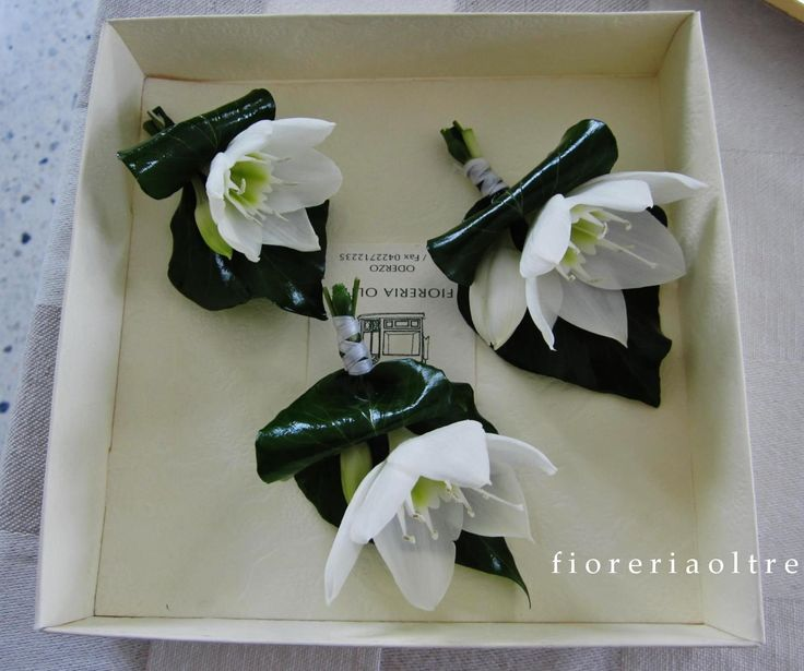 17 Best Images About Fioreria Oltre Wedding Ceremonies On: 302 Best Corsages Images On Pinterest