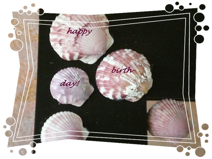 Happy Birthday with Atlantic Calico Scallops
