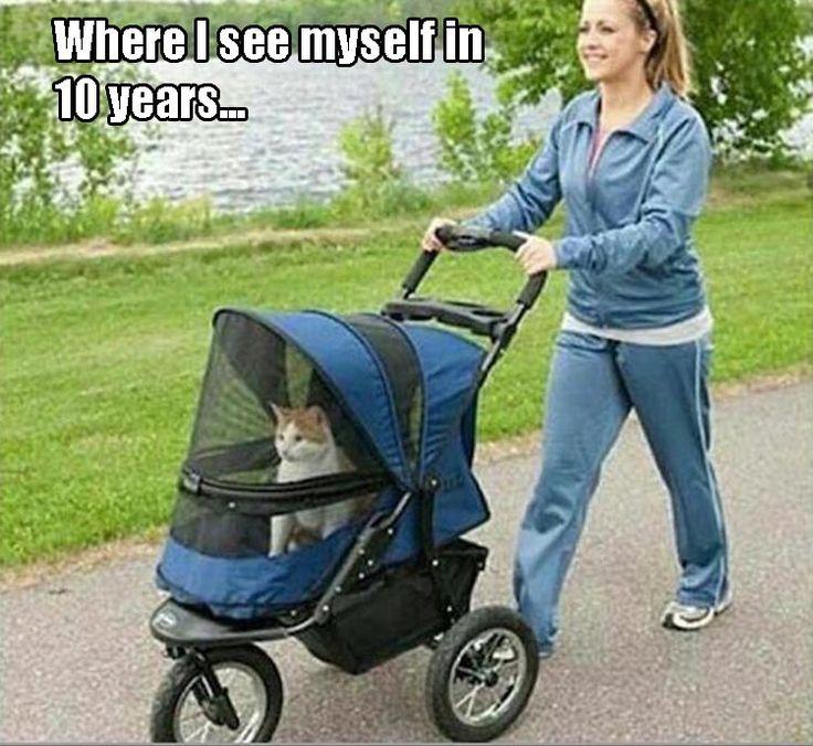 Where I see myself in 10 years.