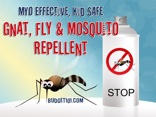 Natural DIY Gnat, Fly, Mosquito Repellent - Real Vanilla Extract & Water!