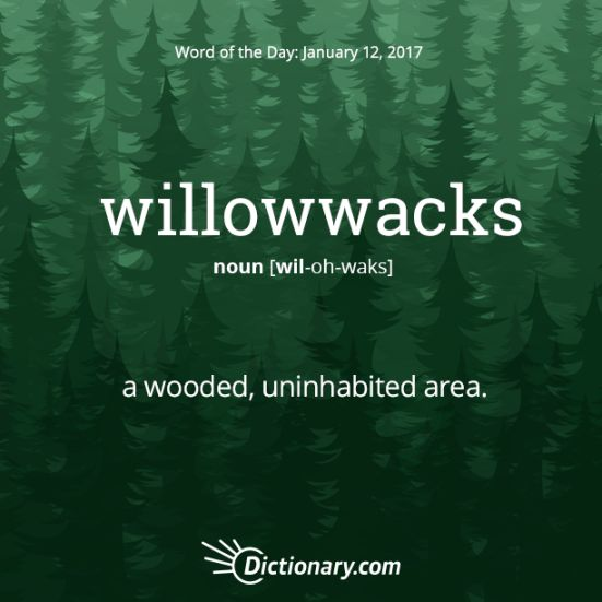 Words We Like – Writers Write