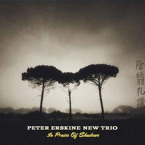 In Praise Of Shadows - Peter Erskine New Trio, CD