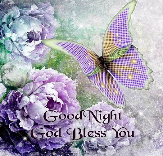 Good+Night+Blessings+Quotes | ... you a Blessed and Restful Evening! Good Night & God Bless You All