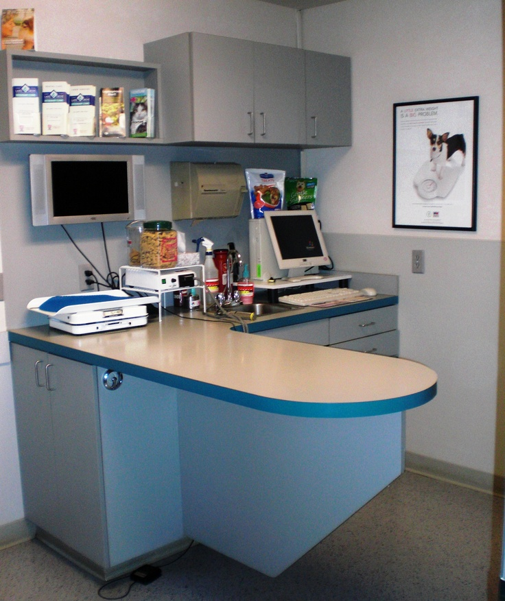 14 best Veterinary Clinic decor & colors images on ...
