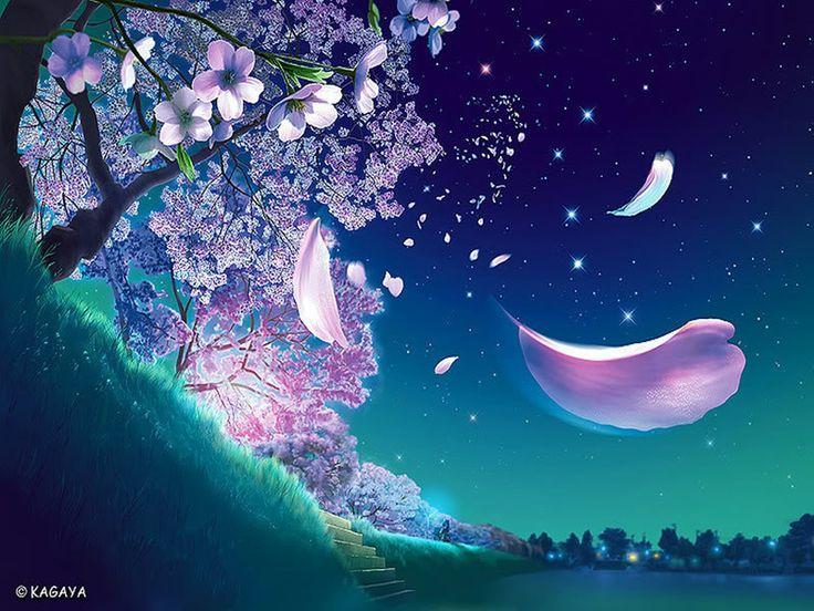 Sakura.jpg (800×600)