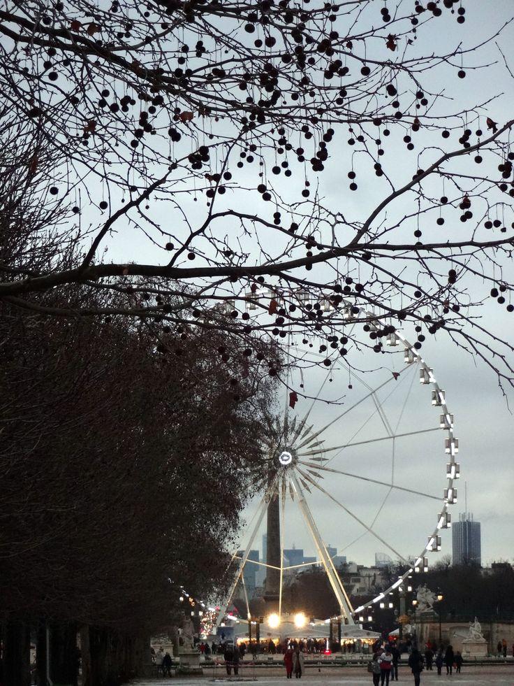 Paris during the winter - 2013