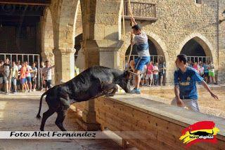 torodigital: Concluyen los festejos taurinos de San Lamberto 2...