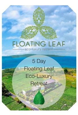 Floating Leaf Balinese Eco-Retreat: 19 - 25 November 2017 - Miessence: home to probiotic, antioxidant and green alkalising certified organic superfood nutrition.