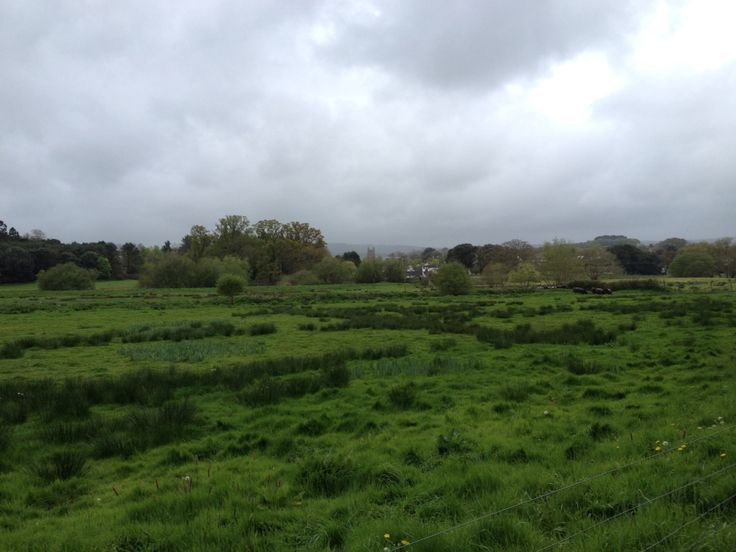 Powderham