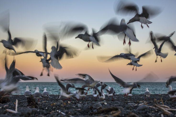 Теплый закат | National Geographic Россия