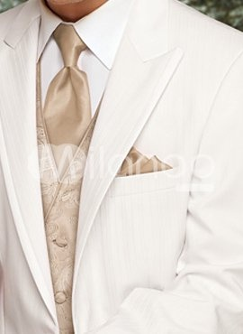 Groom Tuxedo Tuxedos And Grooms On Pinterest