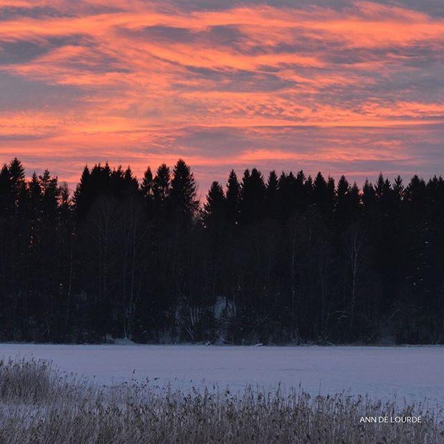 Nordbytjernet, Tuesday, 27th January 2015, Nordbytjern, Ullensaker, Romerike, Norge.