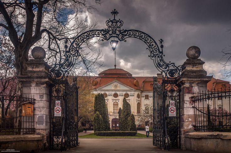 Muzeul Tarii Crisurilor #Oradea by Andrei Damian on #500px