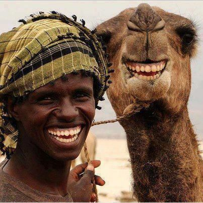 Camels smile too! What a beautiful photo xox