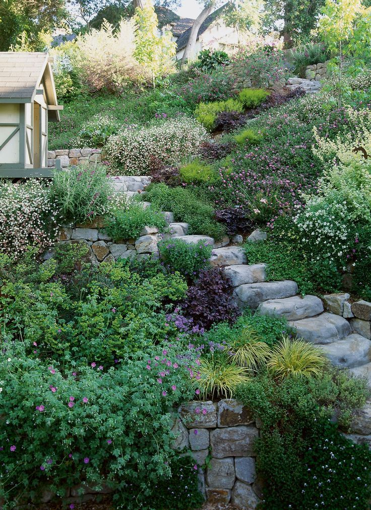 Low Maintenance Landscaping Shrubs 1486706011 Cementedbackyardideas In 2020 Sloped Garden Backyard Landscaping Designs Hillside Garden