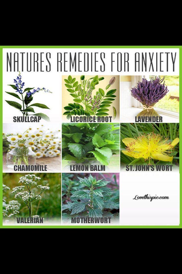 Natural Remedies For Ocd