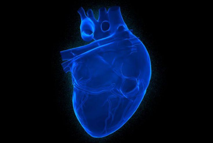 Γονίδια για τους παλμούς της καρδιάς