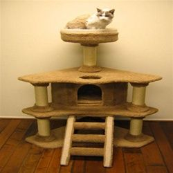 Fit for royalty, your spoiled kitty will feel like he's the king of the castle with the Kozy Korner Cat Scratching Tree! This deluxe cat tower is loaded with features that will keep your curious cat busy for hours at a time. https://www.moorepet.com/Kozy-Korner-Cat-Scratching-Tree-with-Condo-p/ff-kozykorner.htm