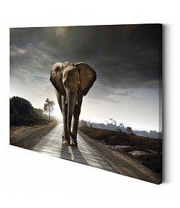 25 beste idee n over olifant schilderijen op pinterest for Schilderij olifant